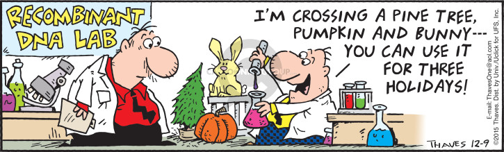 Comic Strip Bob Thaves Tom Thaves  Frank and Ernest 2015-12-09 Halloween