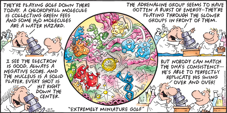 Comic Strip Bob Thaves Tom Thaves  Frank and Ernest 2016-10-09 golf