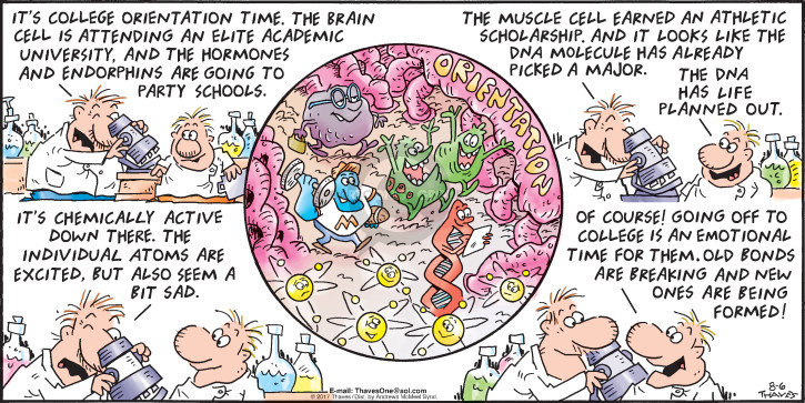 Comic Strip Bob Thaves Tom Thaves  Frank and Ernest 2017-08-06 cell