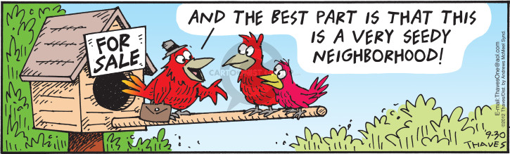 Comic Strip Bob Thaves Tom Thaves  Frank and Ernest 2017-09-30 bird house