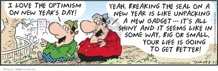Comic Strip Bob Thaves Tom Thaves  Frank and Ernest 2019-01-01 life change