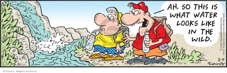 Comic Strip Bob Thaves Tom Thaves  Frank and Ernest 2019-02-09 in water