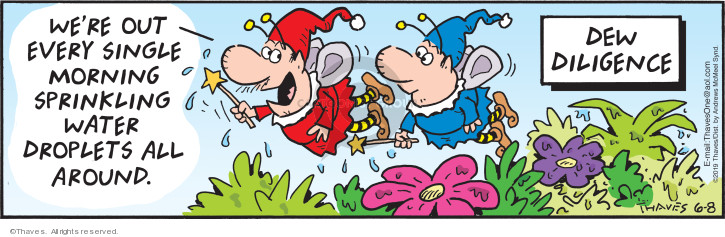 Comic Strip Bob Thaves Tom Thaves  Frank and Ernest 2019-06-08 fairy