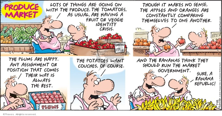 Comic Strip Bob Thaves Tom Thaves  Frank and Ernest 2019-07-28 market