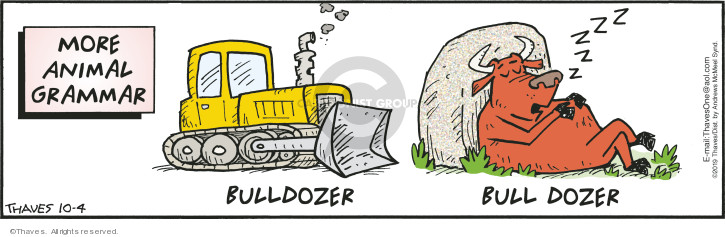 More animal grammar.  Bulldozer.  Bull dozer.
