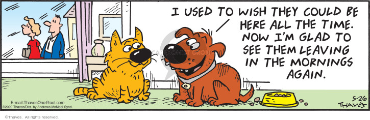 Comic Strip Bob Thaves Tom Thaves  Frank and Ernest 2020-05-26 cat owner