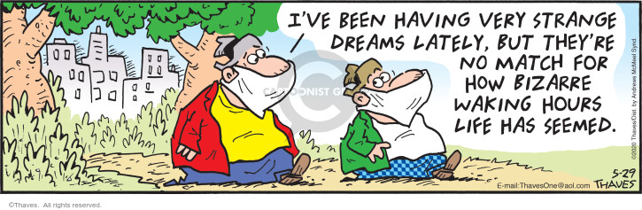 Comic Strip Bob Thaves Tom Thaves  Frank and Ernest 2020-05-29 dream