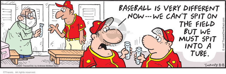 Comic Strip Bob Thaves Tom Thaves  Frank and Ernest 2020-08-08 baseball