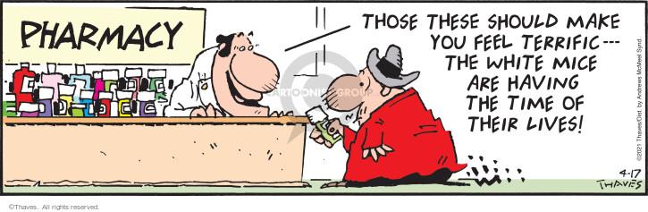 Comic Strip Bob Thaves Tom Thaves  Frank and Ernest 2021-04-17 Bob