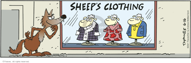 Comic Strip Bob Thaves Tom Thaves  Frank and Ernest 2021-06-16 deception