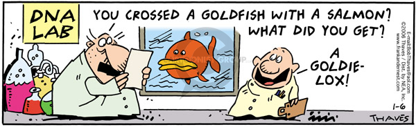 Comic Strip Bob Thaves Tom Thaves  Frank and Ernest 2006-01-06 goldfish