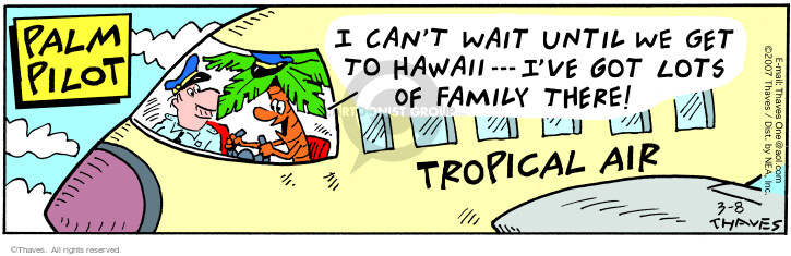 Comic Strip Bob Thaves Tom Thaves  Frank and Ernest 2007-03-08 airline