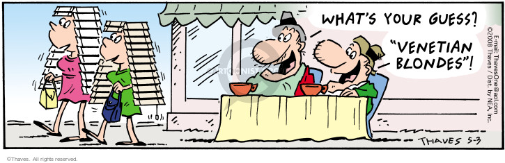 Comic Strip Bob Thaves Tom Thaves  Frank and Ernest 2008-05-03 hat hair