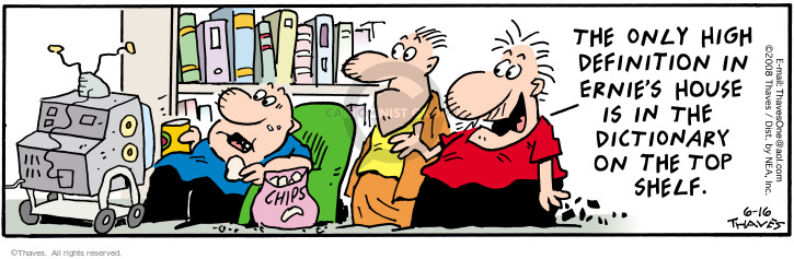 Comic Strip Bob Thaves Tom Thaves  Frank and Ernest 2008-06-16 television viewer