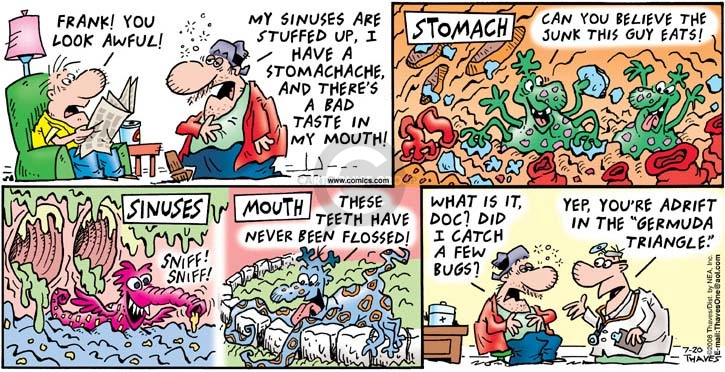 Comic Strip Bob Thaves Tom Thaves  Frank and Ernest 2008-07-20 dental floss