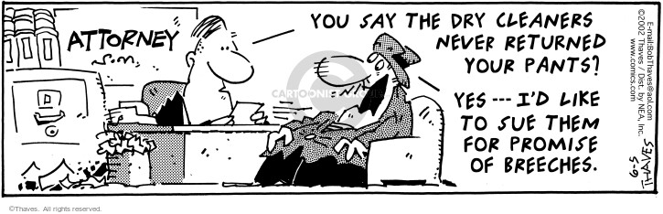 Comic Strip Bob Thaves Tom Thaves  Frank and Ernest 2002-06-05 legal client