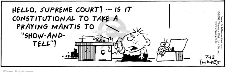 Comic Strip Bob Thaves Tom Thaves  Frank and Ernest 2002-07-12 state court