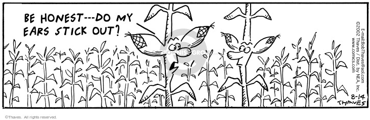 Comic Strip Bob Thaves Tom Thaves  Frank and Ernest 2002-08-14 corn