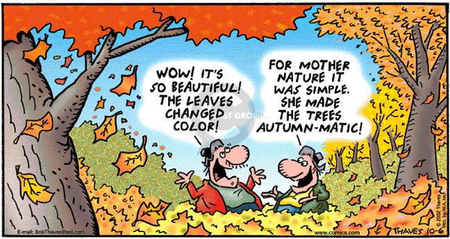 Comic Strip Bob Thaves Tom Thaves  Frank and Ernest 2002-10-06 fall
