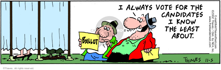 Comic Strip Bob Thaves Tom Thaves  Frank and Ernest 2002-11-05 election