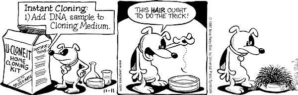 Cartoonist Nina Paley  Fluff 1997-11-11 experiment