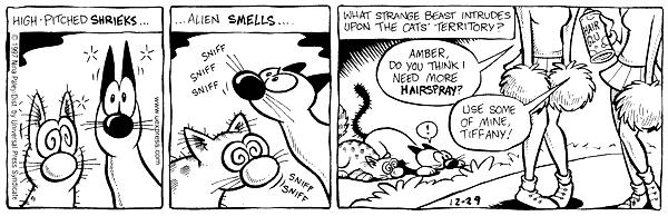 Cartoonist Nina Paley  Fluff 1997-12-29 appearance