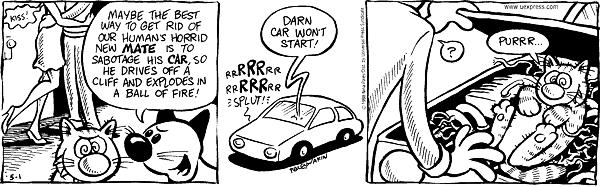 Kiss! Maybe the best way to get rid of our humans horrid new mate is to sabotage his car, so he drives off a cliff and explodes in a ball of fire! rrRRRrr, rrRRRrr. Splut! Darn car wont start! ? Purrr…