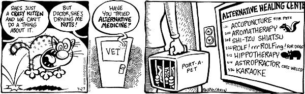 Cartoonist Nina Paley  Fluff 1998-07-27 veterinary