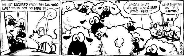 Cartoonist Nina Paley  Fluff 1998-11-11 find