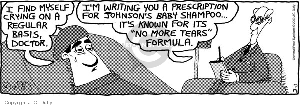 Comic Strip J.C. Duffy  Fusco Brothers 2009-03-11 therapy