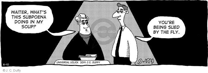 Comic Strip J.C. Duffy  Fusco Brothers 2014-06-10 fly in soup