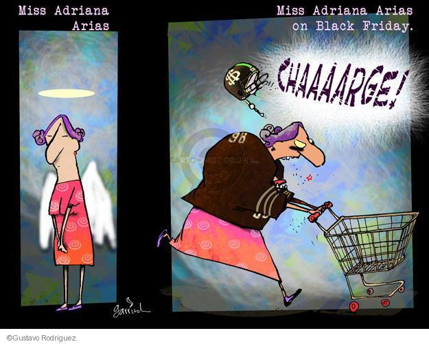 Gustavo Rodriguez  Garrincha's Editorial Cartoons 2011-11-24 charge