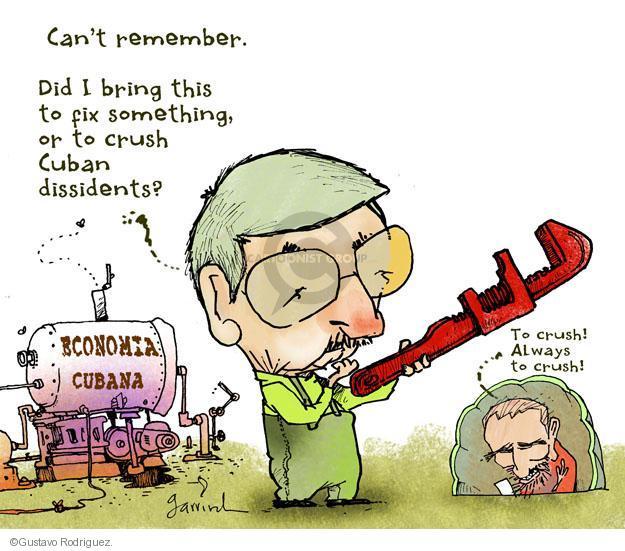Gustavo Rodriguez  Garrincha's Editorial Cartoons 2011-12-07 can