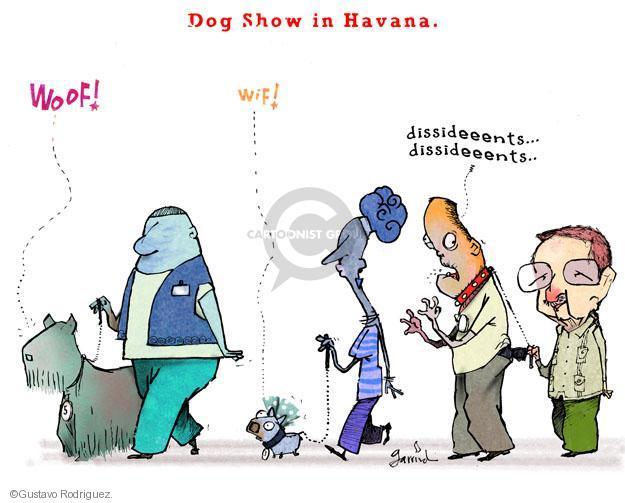 Dog Show in Havana. Woof! Wif! Dissideents … Dissideents …