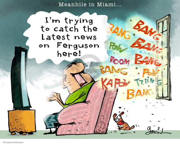 Cartoonist Gustavo Rodriguez  Garrincha's Editorial Cartoons 2014-12-02 Florida