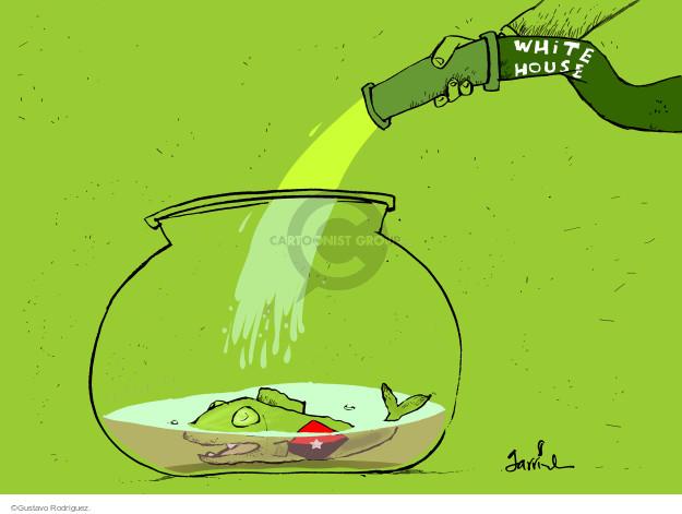 Cartoonist Gustavo Rodriguez  Garrincha's Editorial Cartoons 2014-12-17 white
