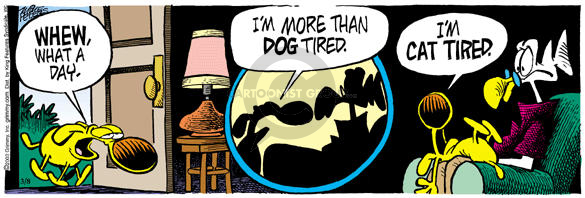 Comic Strip Mike Peters  Mother Goose and Grimm 2003-03-08 dog and cat