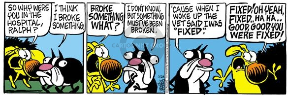 Comic Strip Mike Peters  Mother Goose and Grimm 2005-03-28 vet