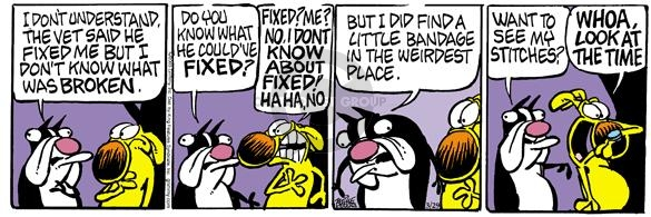 Comic Strip Mike Peters  Mother Goose and Grimm 2005-03-29 genital