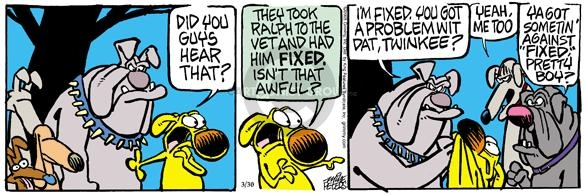 Comic Strip Mike Peters  Mother Goose and Grimm 2005-03-30 get dog fixed
