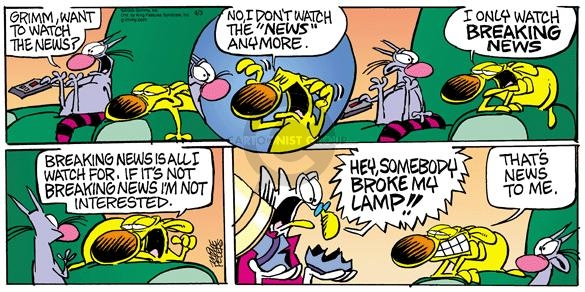 Cartoonist Mike Peters  Mother Goose and Grimm 2005-04-03 lamp