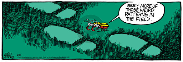 Comic Strip Mike Peters  Mother Goose and Grimm 2003-04-21 extraterrestrial