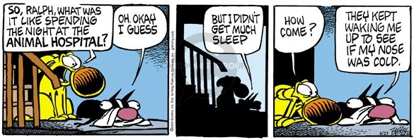 Comic Strip Mike Peters  Mother Goose and Grimm 2005-04-23 sleep
