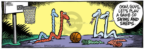Comic Strip Mike Peters  Mother Goose and Grimm 2003-06-03 basketball net
