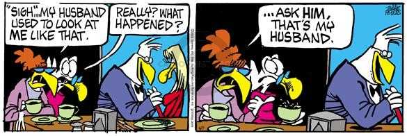 Comic Strip Mike Peters  Mother Goose and Grimm 2005-06-07 affair