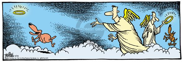 Comic Strip Mike Peters  Mother Goose and Grimm 2004-06-16 cloud