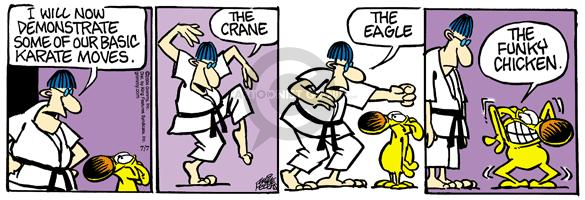 Cartoonist Mike Peters  Mother Goose and Grimm 2004-07-07 karate