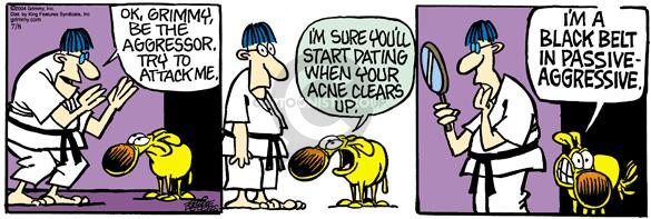 Cartoonist Mike Peters  Mother Goose and Grimm 2004-07-08 karate