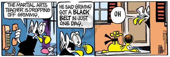 Cartoonist Mike Peters  Mother Goose and Grimm 2004-07-10 karate