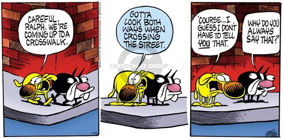 Comic Strip Mike Peters  Mother Goose and Grimm 2005-07-31 orientation